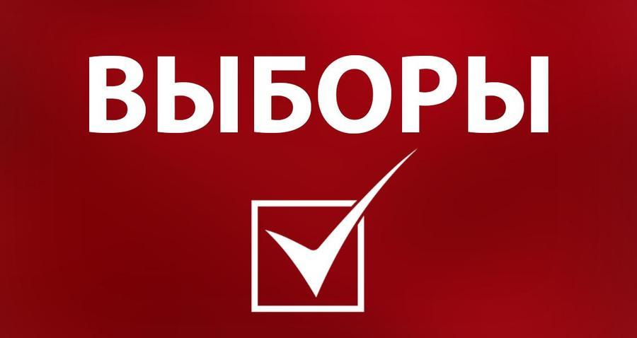 Десятого декабря в Беларуси стартовал этап выдвижения кандидатов в депутаты местных Советов