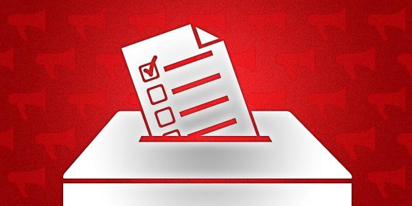 8 января в Беларуси завершилось выдвижение кандидатов в депутаты местных Советов