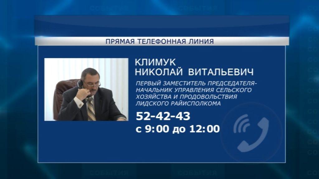 В субботу с 9 часов утра и до полудня по всей стране будут работать «прямые телефонные линии»