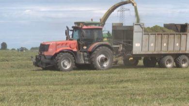 Photo of В Лидском районе идет заготовка кормов