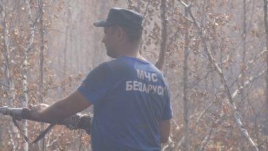 Photo of Спасатели и работники лесхоза тушат торфяные пожары в Лидском районe
