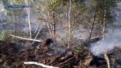 Photo of Крупный пожар в Лидском районе зарегистрирован на торфяниках в пятницу, 30-го августа