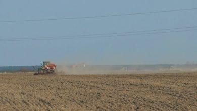 Photo of В Беларуси начался массовый сев озимых зерновых