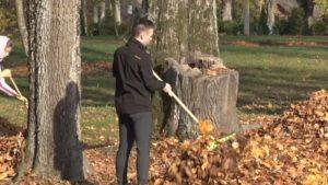 Жители Лидчины поддержали республиканскую добровольную акцию «Чистый лес»