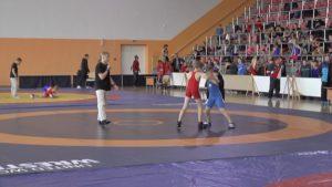 Республиканский турнир по вольной борьбе стартовал сегодня в Лиде