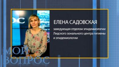 Заведующая отделом эпидемиологии Лидского зонального центра гигиены и эпидемиологии Елена Садовская.