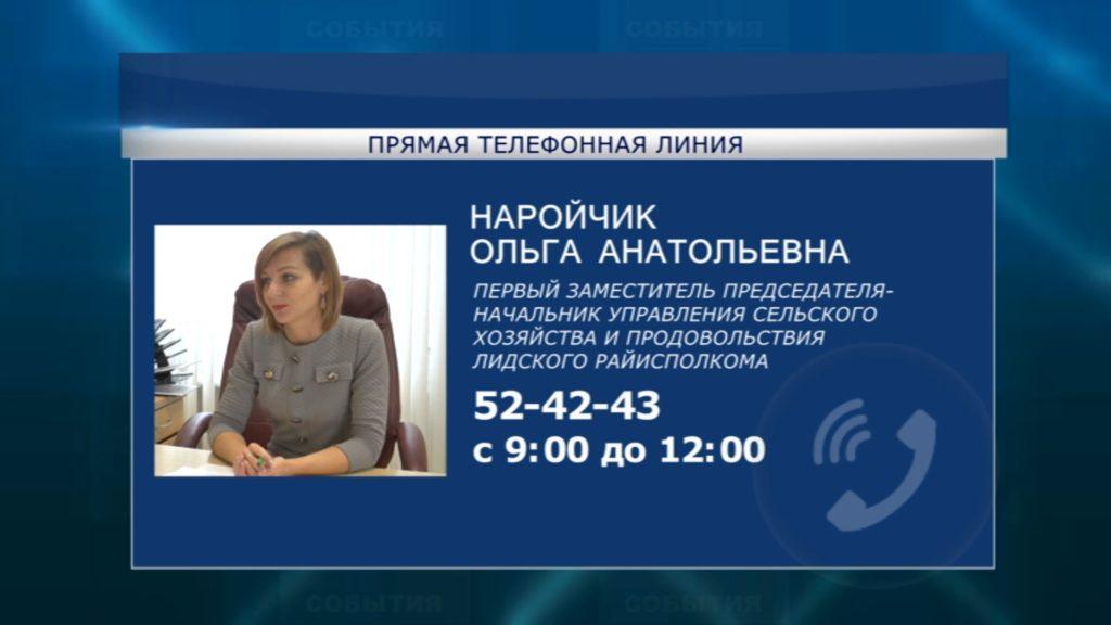 Второго ноября субботнюю «прямую телефонную линию» в Лиде проведет Ольга Наройчик