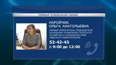 Photo of Второго ноября субботнюю «прямую телефонную линию» в Лиде проведет Ольга Наройчик