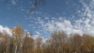 В Беларуси на этой неделе похолодает
