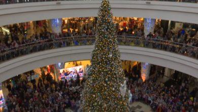 В «Дана Молл» состоялся большой новогодний детский праздник