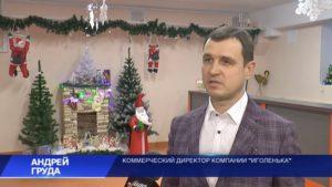 В «Новогодней викторине» будет разыгран необычный подарок от компании «Иголенька» – аккумуляторная воздуходувка