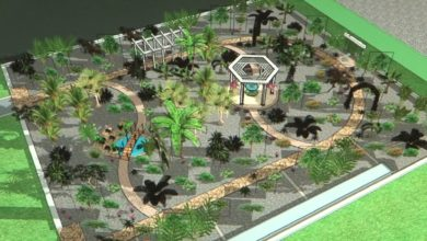 В Лиде планируется создание ботанического сада