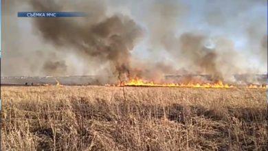 Photo of В этом году в Лиде и Лидском районе зарегистрирован один пожар, произошедший по причине палов