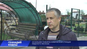 В Гродненской области отменен запрет на посещение лесов