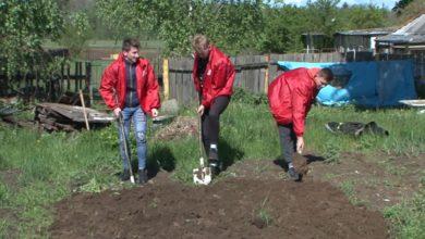 Photo of Волонтеры движения БРСМ «Доброе сердце» оказывают помощь одиноким пожилым людям