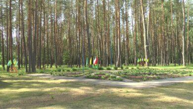 Photo of Оздоровительные лагеря на Лидчине готовы принять детей