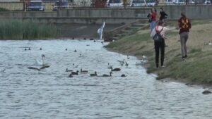 Купальный сезон в самом разгаре и отдых на водоемах должен быть безопасным