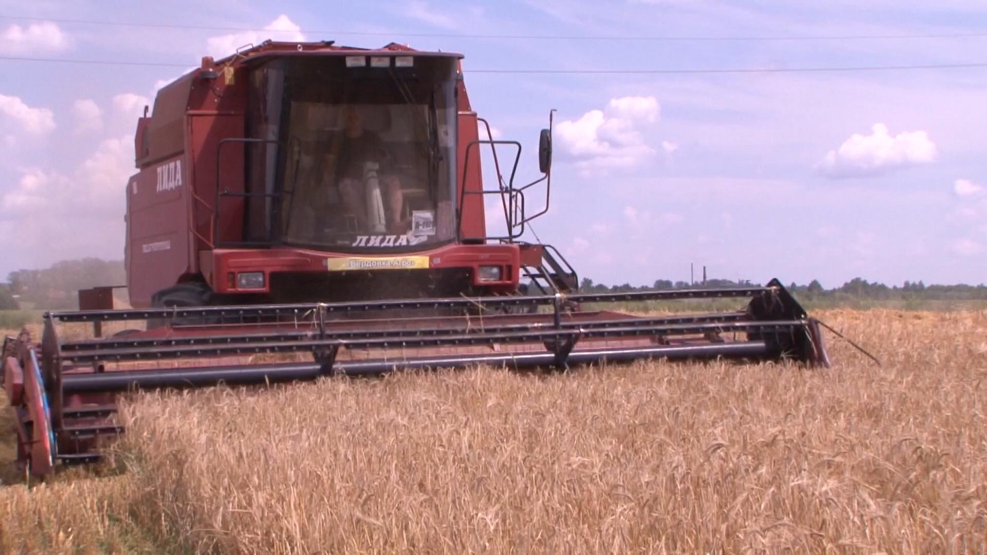 Аграрии собрали более 3 млн. т зерна. Работы в полях идут без остановок.