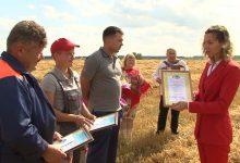 Photo of В Лидском районе уже есть первые тысячники на уборке и отвозке зерна нового урожая