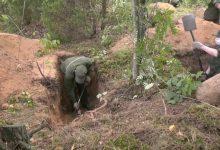 Photo of В лесу у деревни Токари ведется поиск захоронения убитых в годы войны красноармейцев