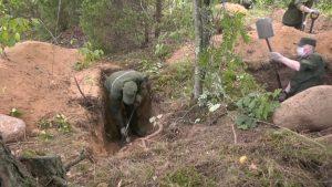 В лесу у деревни Токари ведется поиск захоронения убитых в годы войны красноармейцев