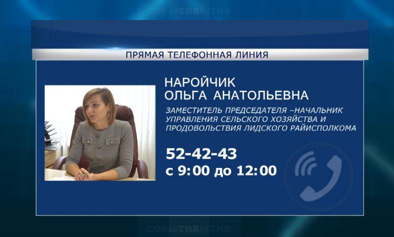Первую осеннюю субботнюю «прямую телефонную линию» в Лиде проведет Ольгой Наройчик