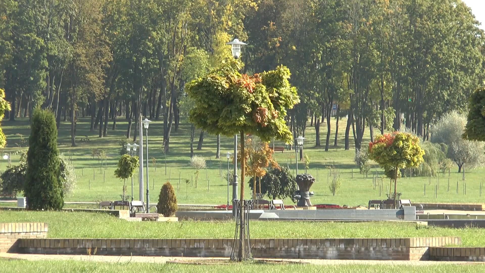 Первая декада октября в регионе ожидается теплее обычного.