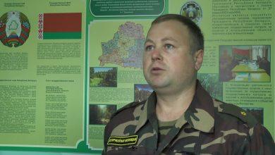 С 1 октября в Беларуси открывается сезон загонной охоты на копытных охотничьих животных