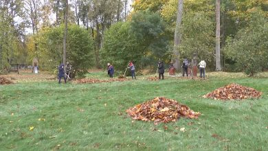 Лидчане присоединились к республиканской экологической акции по уборке лесного фонда «Чистый лес»