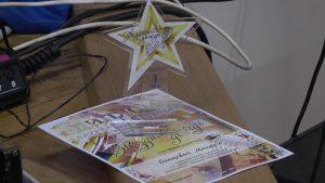 Лидчане стали призерами фестиваля-конкурса детского вокально-эстрадного творчества «Звездный дождь»