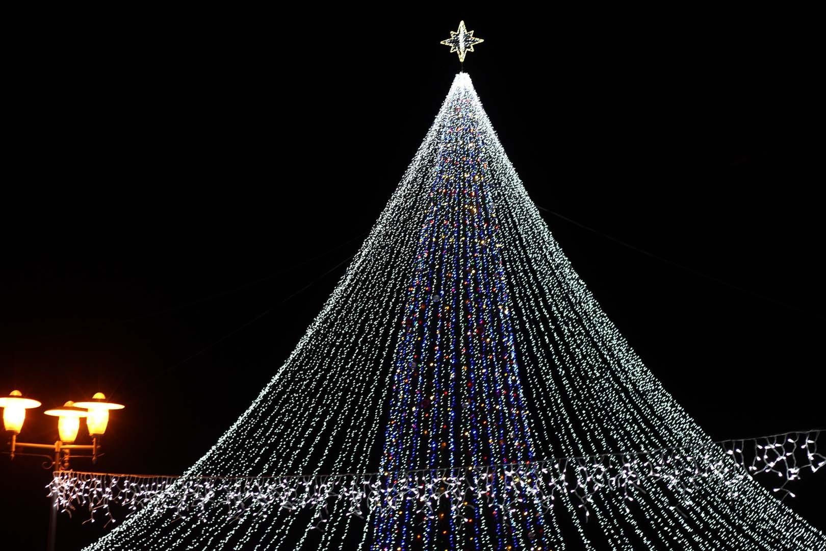 В Лиде зажглась иллюминация и огни на елке, установленной на Дожиночной площади.