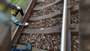 Установлена личность мужчины, который 24 ноября на перегоне «Лида-Минойты» наложил на рельсы металлическую проволоку