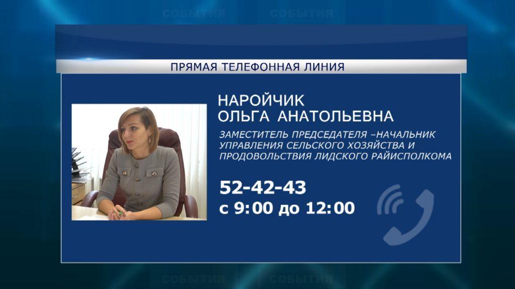 Субботнюю «прямую телефонную линию» в эту субботу в Лиде проведет Ольгой Наройчик