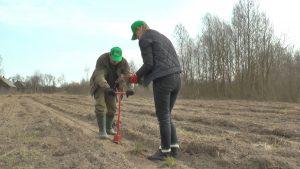 Работники Лидского райисполкома приняли участие в акции «Неделя леса»