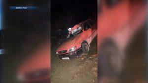 В Лидском районе подросток получил травмы в результате столкновения автомобиля с лосем
