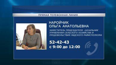 Cубботнюю «прямую телефонную линию» проведет Ольга Наройчик