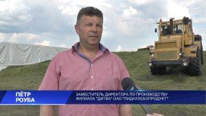 В хозяйствах Лидского района в разгаре заготовка травяных кормов
